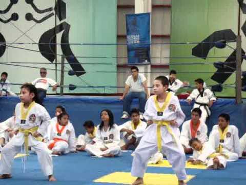 examen de tae kwon do: