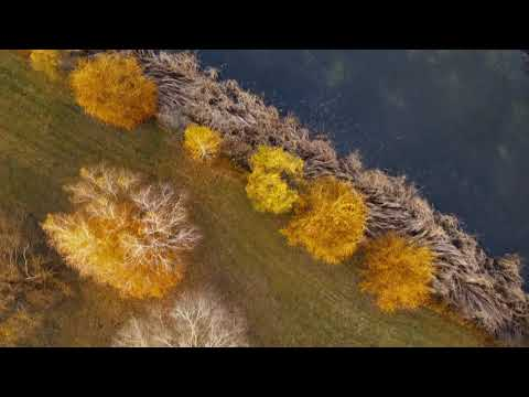 Petőfi Sándor - Itt van az ősz, itt van ujra (részlet)   |   Vekeri-tó, 2019. ősz