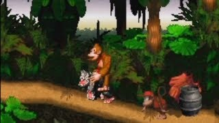 Donkey Kong Country - Recopilación de bugs (¡¡Video 300!!)