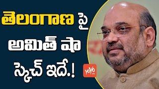 తెలంగాణపై బీజేపీ స్కెచ్ ఇదే!  | BJP Sketch on Telangana | Telugu News | YOYO TV Channel