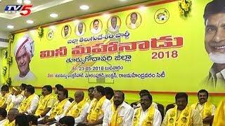 ఏపీలో పసుపు పండగ సంబరాలు..! | TDP Conducts Mini Mahanadu In Constituencies