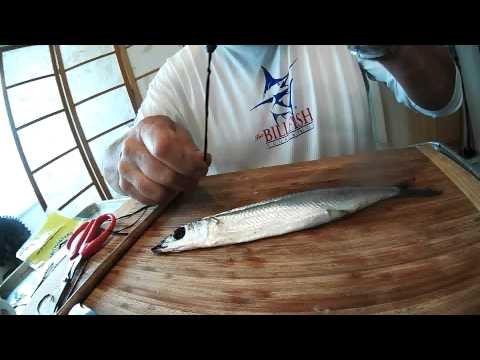 Rigging A Weighted Circle Hook Ballyhoo How To Save