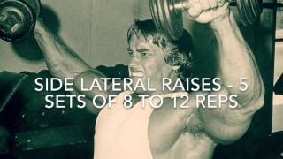 Arnold's Basic Training Routine