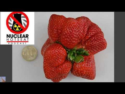 Fukushima Godzilla Strawberry 🍓💀 Much More! (Nuclear Hotseat #209)