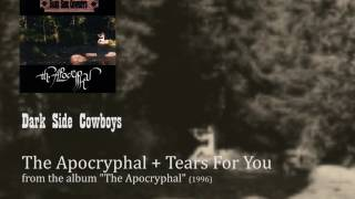 Watch Dark Side Cowboys Tears For You video