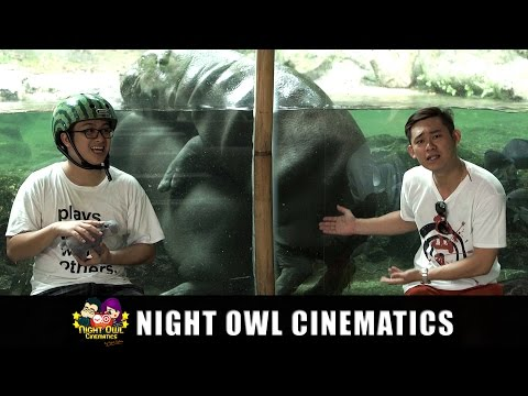 Mr Wong Hokkien Word of the Day - Zoo Animals