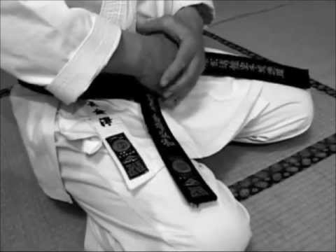 Shotokan Karate Do video
