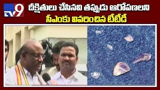 Ramana Dikshitulu makes false charges - TTD Chairman Sudhakar Yadav