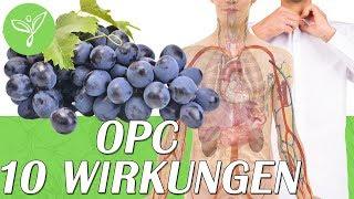 Schau was OPC Traubenkernextrakt in Deinem Körper bewirken kann...