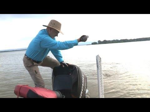 Sardis lake fishing report oklahoma for Sardis lake fishing report
