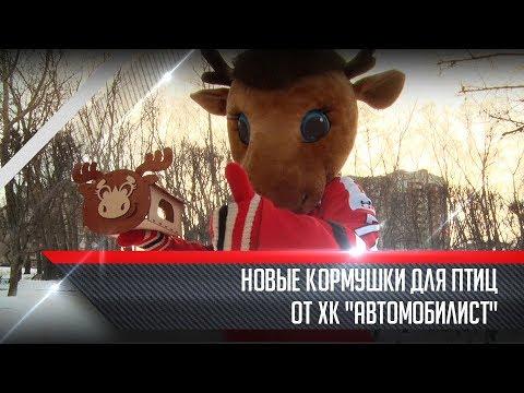 """Новые кормушки для птиц  от ХК """"Автомобилист"""""""