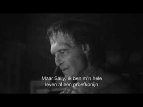 Bodyparts – vrijsoavrij.nl