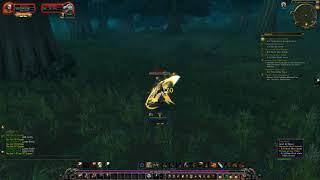 World of Warcraft 1-120 Grind Paladin Retribution Part  8