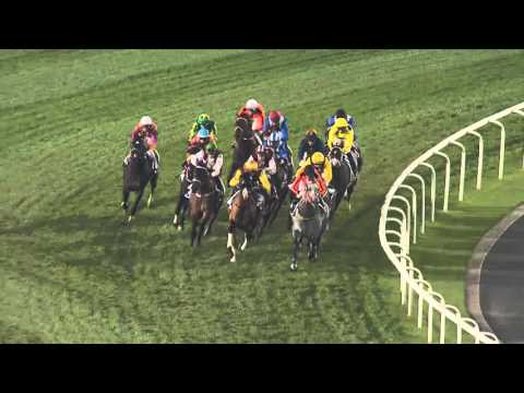 Meydan Racecourse, 30 January 2016 - Race 6 - Al Naboodah Travel & Tourism Agencies Trophy Handicap