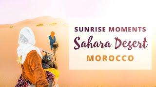 SUNRISE IN THE SAHARA DESERT - Merzouga - Morocco Travel Vlog