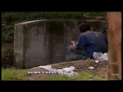 ZONA DE TOLERANCIA PT 2 (alma y afecto)