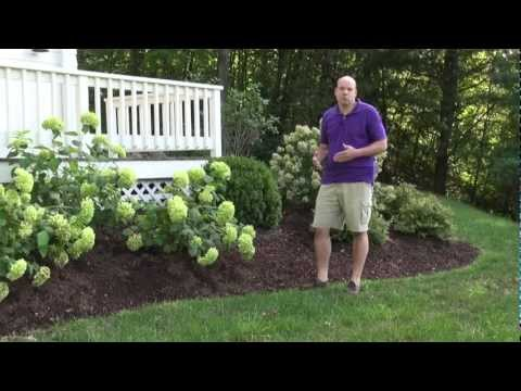 Front Yard Landscape Design Ideas - Trumbull CT Landscape Designer