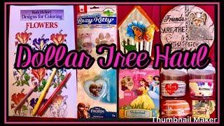 BIG DOLLAR TREE HAUL | ALL NEW AMAZING FINDS | JAN 10 2019