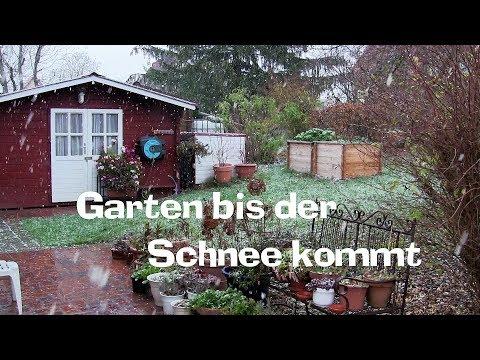 Garten bis der Schnee kommt! Film 68