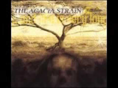 the acacia strain - all she wrote Video
