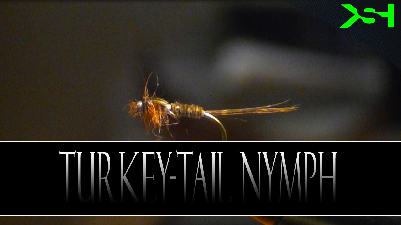 Keystonehunters Presents Fly Tying 101  Turkey tail nymph  with Jake Meckely