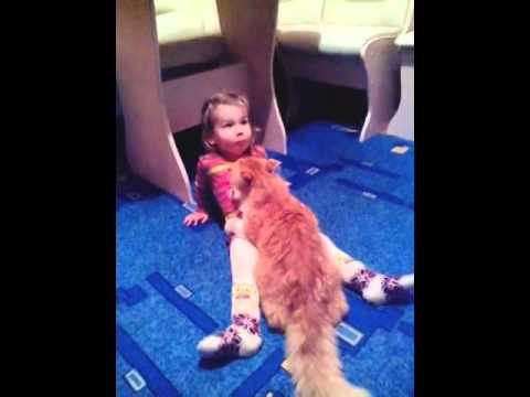 This Cat Likes this Baby Girl