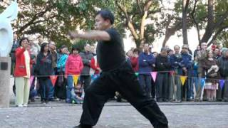 Tiger and leopard quan-kung fu corner