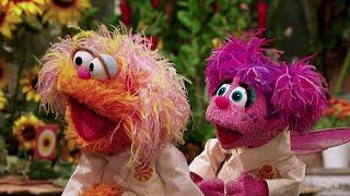 Sesame Street Season 48: Karate