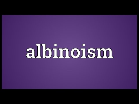 Header of Albinoism