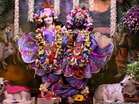 Iskcon Vrindavan Mangala Aarti Darshan On 05 Mar 2015 video