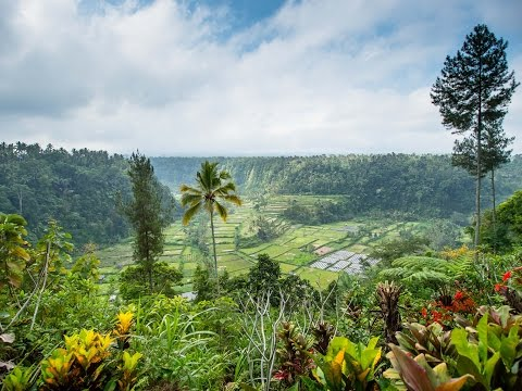 Bali - Indonesien (2014)