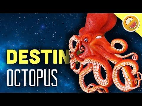 Destiny OCTOPUS - Custom Game