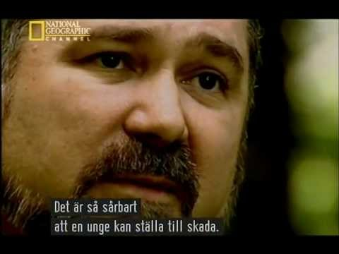 Hackers English Documentary [Svenska]