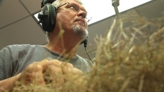 Holey Foley | Sound Design at Earth Touch
