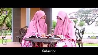 Sholawat,  Hasbi Rabbi Jalallah Versi Terbaru''   Versi Wanita Kembar Bercadar  Niqab , BAPER!!!!