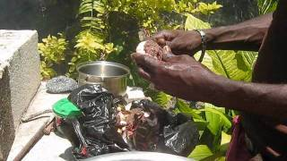 download lagu Jamaican Cooking Class - Red Pea Soup gratis