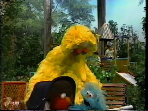 Sesame Street - Big Bird, Rosita And Elmo Play Family video