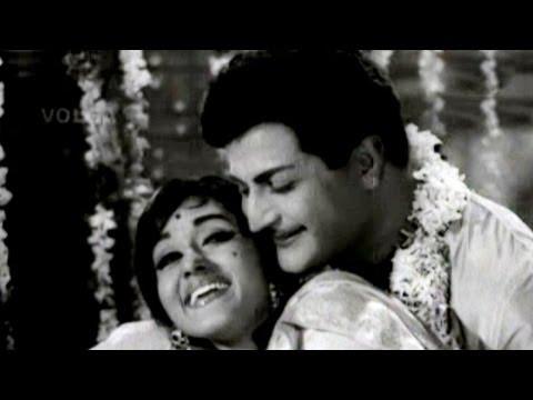 Ninne Pelladatha Songs | Mallela Paanupu Undi | Ntr, Bharathi video