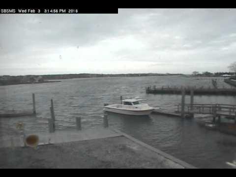 Southampton Marine Station Webcam 1  February 3, 2016