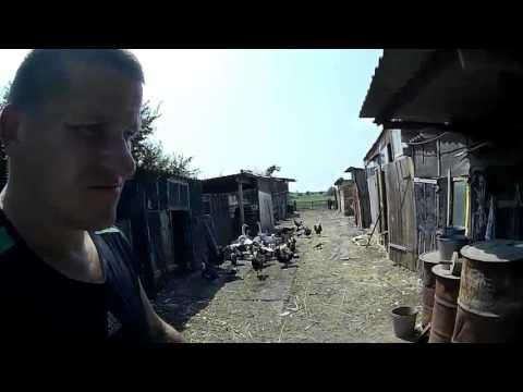 Хранение зерна // Жизнь в деревне.