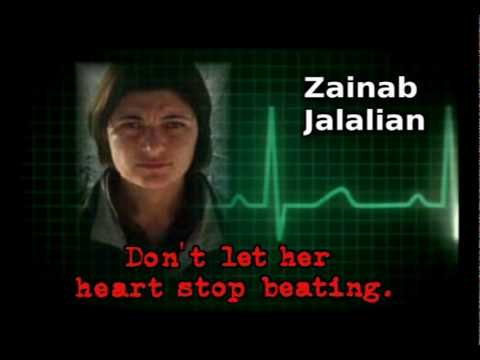 Zainab Jalalian.wmv video