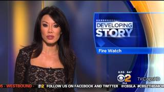 Sharon Tay 2015/07/29 CBS2 Los Angeles HD