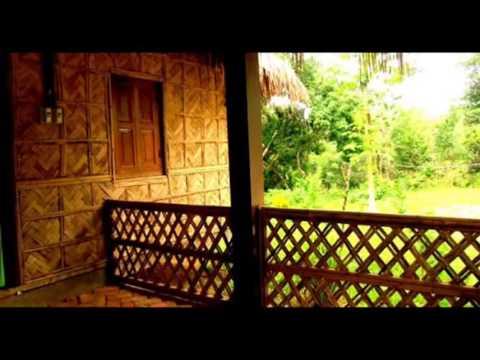 Bangladesh Tourism Hotel Lichibari Eco Cottage Srimongol Bangladesh
