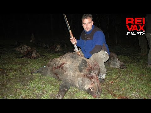 GREAT HUNGARIAN HUNTS - www.reivaxfilms.net - www.reivaxfilms.com