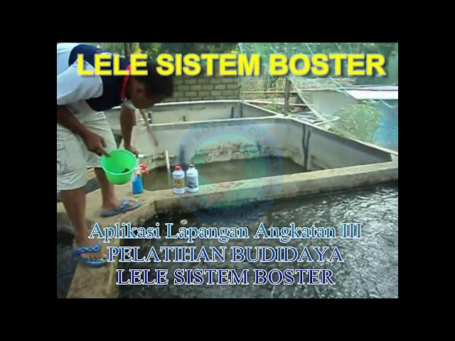 LELE SISTEM BOSTER