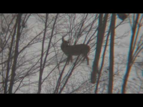 Long Range Hunting  PA Style