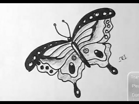 how to draw a easy beautiful butterfly step by step