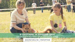 И охотник, и лучший друг, как проходила выставка собак охотничьих пород?