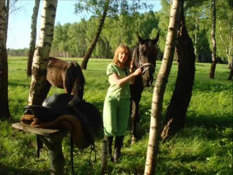 31 мая конные прогулки