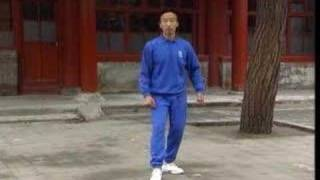 VCD - Essential Points in Yiquan